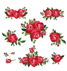 roses on white background vector image vector image