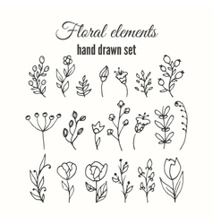 floral decorative set Herbs and wild vector image