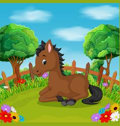 Cartoon happy horse smile in the farm vector