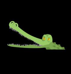 crocodile in water alligator in river water vector image