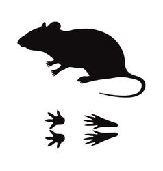 Black silhouette rat mouse wild animal zoo vector image