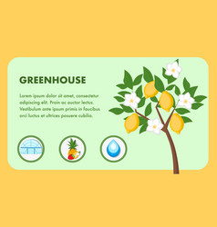 Greenhouse web banner template with text space vector