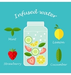 infused water fruit recipe vector image