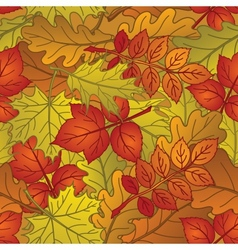 Leaves of plants seamless autumn vector image