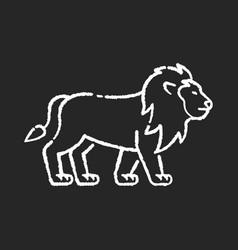 Lion chalk white icon on black background vector