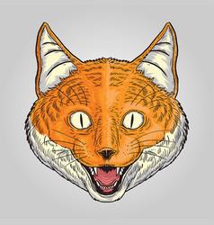 orange fox vector image
