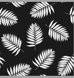 Palm white leaves on black background vector