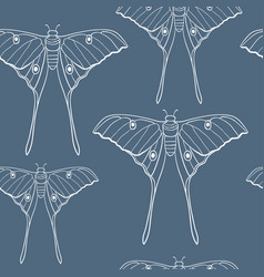 Butterfly on blue seamless pattern vector