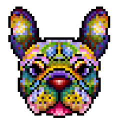 colorful cute pixel french bulldog isolated on vector image
