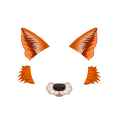 Ears nose and cheeks of red fox elements of vector