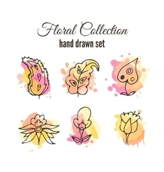 Floral decorative set Colorful splashes vector