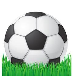 football soccer ball in grass vector image