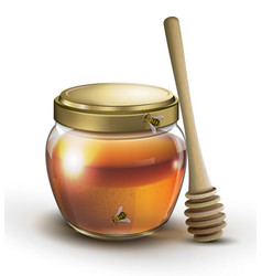 honey jar and stick on a white background vector image