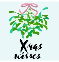 Mistletoe with pink bow and curly ribbon vector image