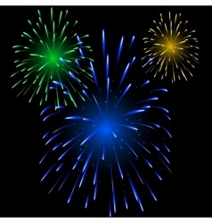 Festive colorful fireworks vector image vector image