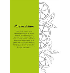 hand drawn design template with lime vector image
