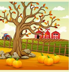 background autumn farm landscape vector image