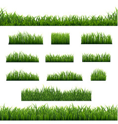 big set green grass borders background vector image