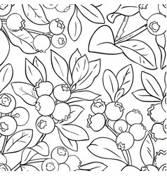 Blueberry plant pattern on white background vector