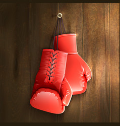 Boxing Gloves On Wall vector image