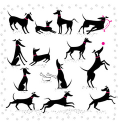 Italian greyhounds set of silhouettes vector