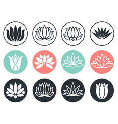 lotus flowers icon stylized abstract beauty vector image