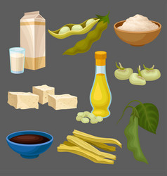 soya food products set milk oil sauce tofu vector image