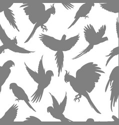 light grey parrots silhouette seamless pattern vector image