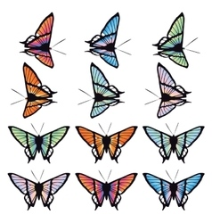 Set of butterflies isolated on white background vector