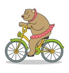 bear circus vector image