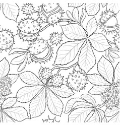 Chestnut plant pattern on white background vector