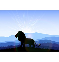 Lion in the field at dawn vector