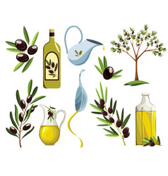 organic olive products set oil elements fresh vector image