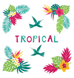 Summer tropical corner elements vector