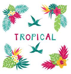 summer tropical corner elements vector image