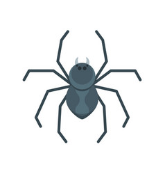 flat style of spider vector image vector image