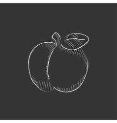 Apple drawn in chalk icon vector