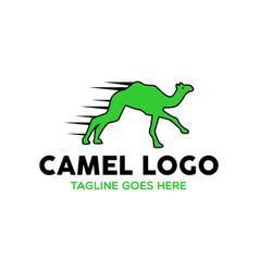 camel logo-16 vector image vector image