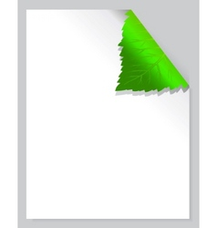 leaf page vector image vector image