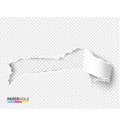 Blank torn paper hole with rip edges for vector