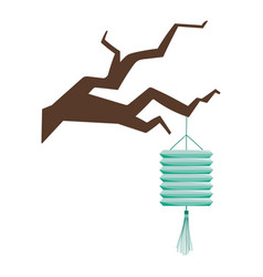Chinese hanging lantern on branch tree isolated vector