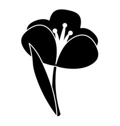 Crocus plant spring floral pictogram vector