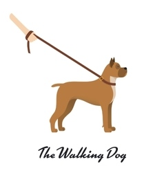Dog boxer with a leash - on white background vector