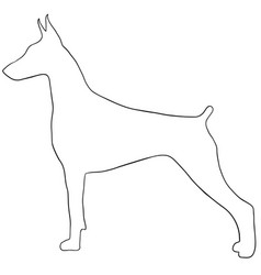 dog contourcute dog coloring isolated vector image