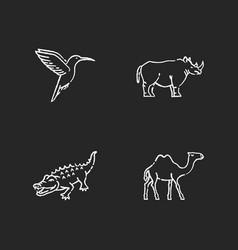 exotic animals chalk white icons set on black vector image