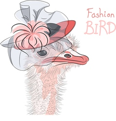 Fashion Ostrich Bird vector