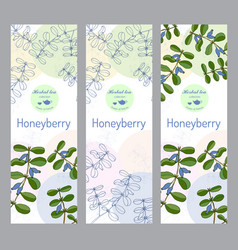 herbal tea collection honeyberry banner set vector image