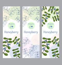 Herbal tea collection honeyberry banner set vector