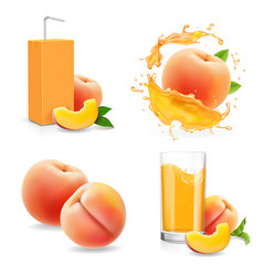 peach juice collection peaches drink package vector image