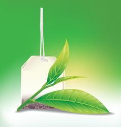 Tea leaf vector